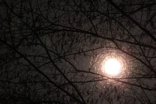 bild natt dag