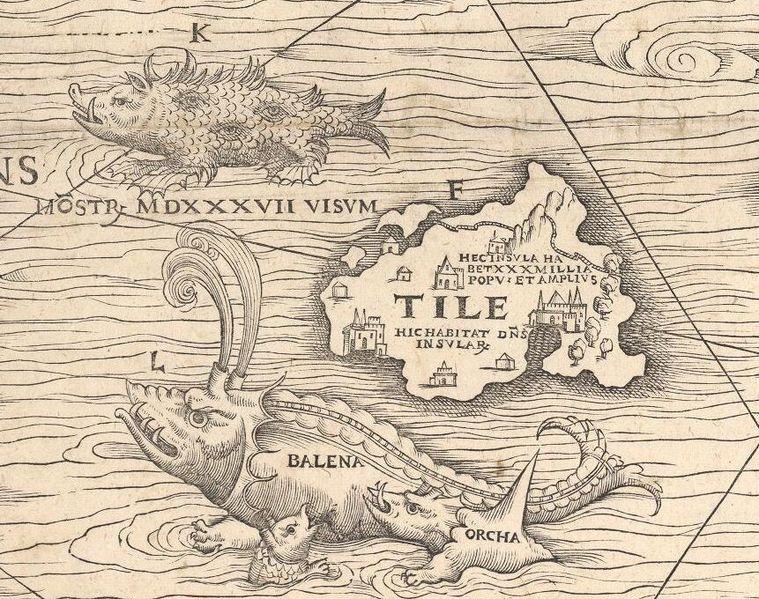Bild carta marina odjur